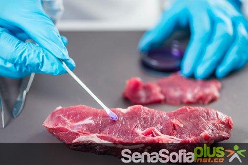 Aditivos: análisis y control de calidad en la industria alimentaria Sena