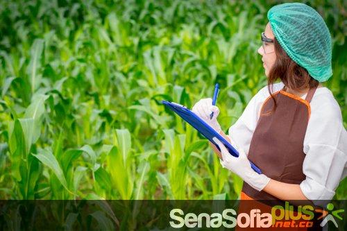 Producción y Consume Sostenible Sena